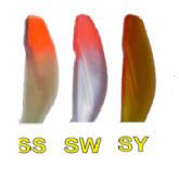 varalica-ribolov-orka-sirena-2112-SI-10